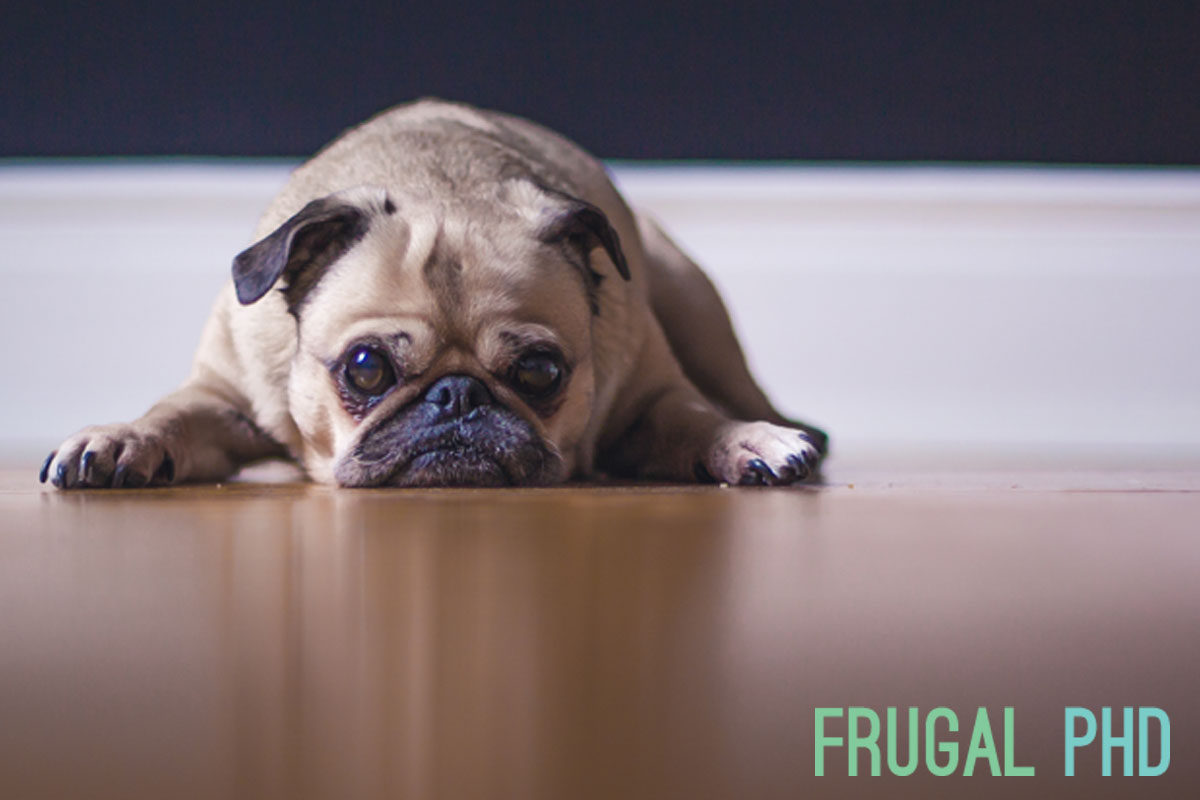 frugal-phd-conquering-your-financial-fear-of-missing-out
